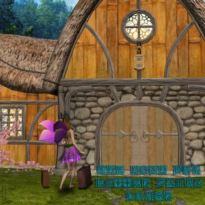 New Home for Little Fairy House Exclusive